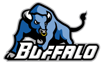 Buffalo_display_image