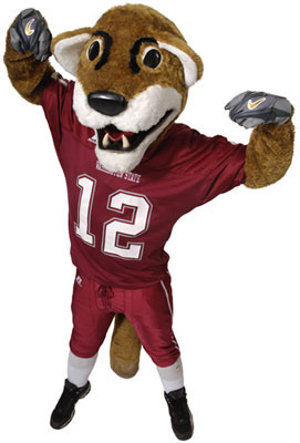Washingtonstatebutchtcougar_display_image