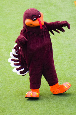 Virginiatechhokiebird_display_image