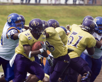 Pvamu111_display_image