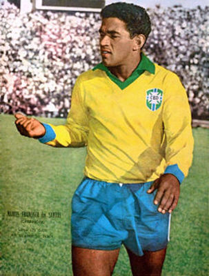 Garrincha_display_image