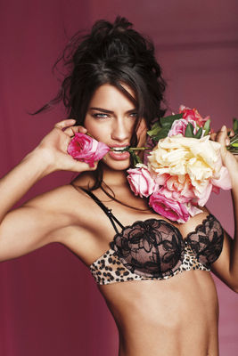 4adrianalima_display_image