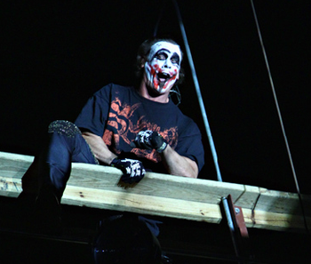 Sting-joker_display_image