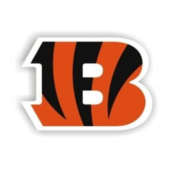Cincinnnatibengals_display_image