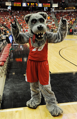In the off-season, this Lobo spends most of his time in Yosemite National Park.