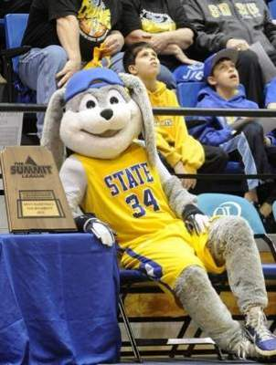 Jack Rabbit is one cool courtside customer.