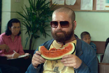 Hangover-2-photo-zach-galifianakis_original_display_image