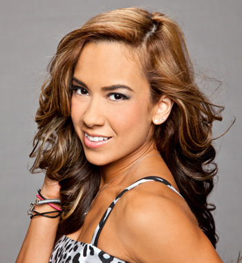 Aj-lee-wwe-divas-24997130-353-384_display_image