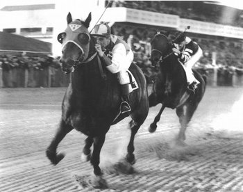 Seabiscuit_t614_display_image