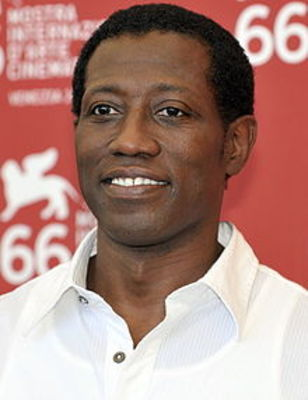 Wesleysnipes_cropped_2009_display_image