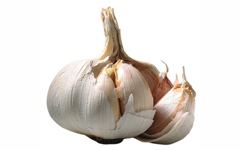 Garlic_display_image