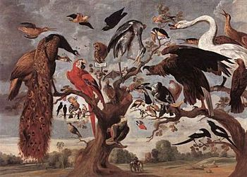 These birds by Van Kessel are worth more than Chamakh.