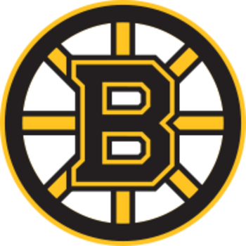 Bostonbruins_display_image