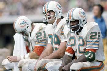 1972-dolphins_display_image