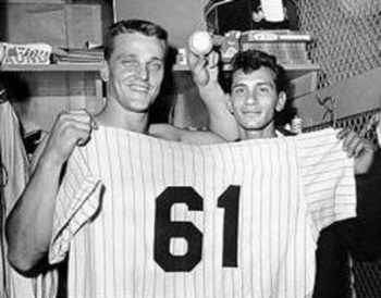 Rogermaris_display_image_display_image