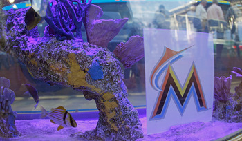 A fish-inspired view at Marlins Park