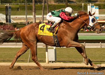 Photo Courtesy drf.com