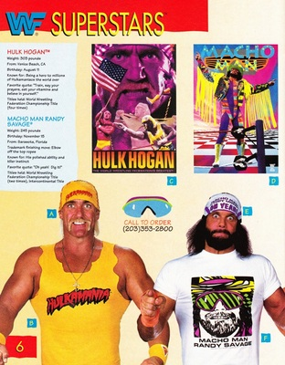 Wwf19_display_image