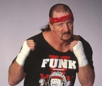 Terry_funk_1_display_image_display_image