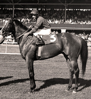 Forward Pass was the 1968 Kentucky Derby Winner