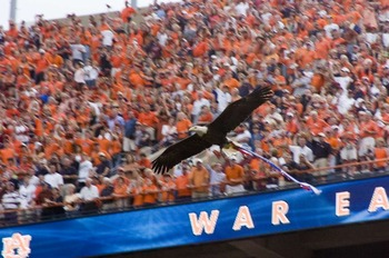 Auburn_vs_miss_st12_display_image