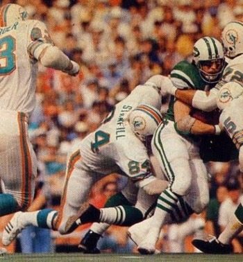 Stanfill_bill_dolphins_display_image