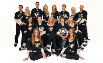 Pittsburgh_pens_display_image