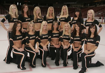 Anaheim_ducks_display_image