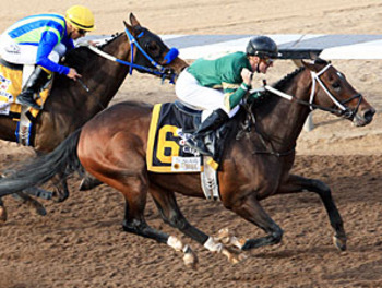 Daddy Nose Best winning the Sunland (photo via bloodhorse.com)