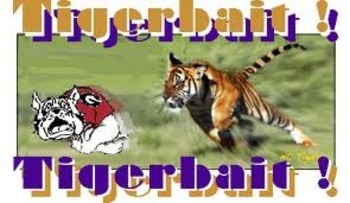 http://www.coolchaser.com/graphics/tag/Lsu%20Tiger%20bait