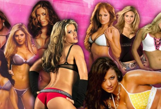 Wwe-divas-bikini-girls-sexy-1600x1200_crop_650x440