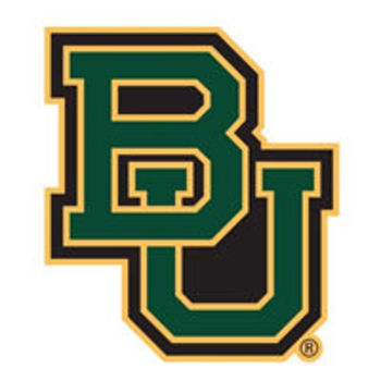 Baylor_display_image