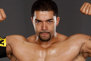 David-otunga-wwe-14661246-624-388_display_image