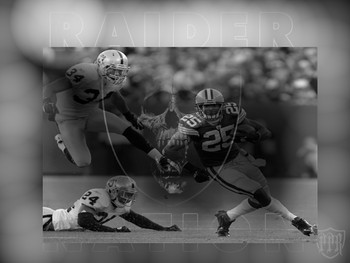 Oakland_raiders_3_display_image