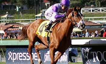 Winning the Robert B. Lewis Stakes (photo via NTRA.com)