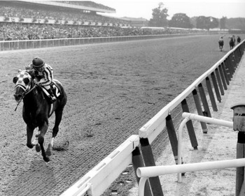 Secretariat_display_image