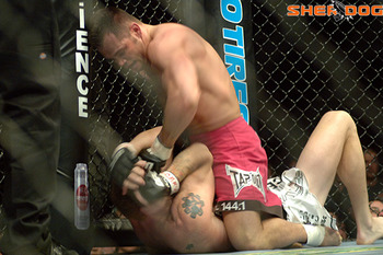 sherdog.com