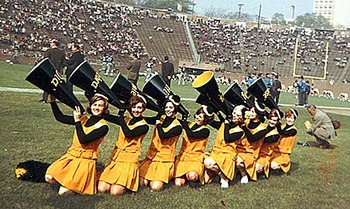 Pittsburghsteelerscheerleaders_display_image