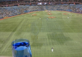 The view from where Fielder's shots landed, courtesy of mopupduty.com.