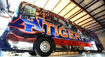 Tigerprowlbus_display_image