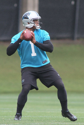 Cam Newton is the one player Carolina cannot afford to lose in 2012.