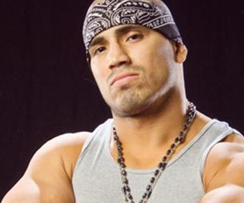 Hunico_display_image