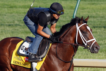 Gemologist will dominate in the Haskell.