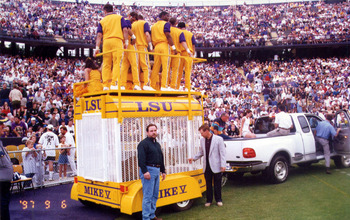 http://lsufootballfreak.com/2008/08/07/2008-lsu-football-season-tough/