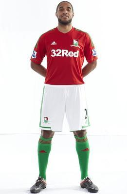 Swansea_display_image
