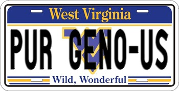 Westvirginia_display_image