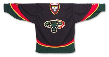 Photo found at http://andythesaint.wordpress.com/2008/10/23/top-10-ugliest-nhl-jerseys-of-all-time-2/