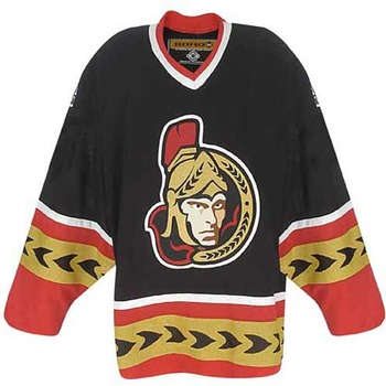 Photo found at http://www.icehockeyjersey.com/Ottawa-Senator-3rd-Alternate-Authentic-NHL-Hockey-Jersey_p_420.html#