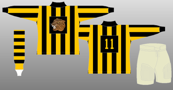 Photo from http://www.nhluniforms.com/DefunctTeams/Tigers1.html
