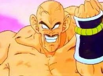 Nappa_display_image